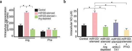 Arginine depletion decreases NO levels in miR122-silenced Huh7 cells.