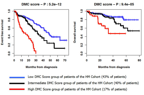 Kaplan-Meier curves of the EFS and OS of the 3 DMC score groups of patients of the HM cohort.