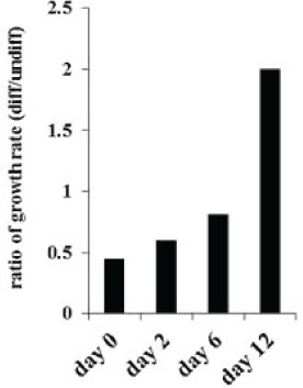 Decreased numbers of OSCSCs after treatment with supernatants from IL-2+anti-CD16mAb treated NK cells.