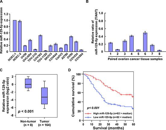 Downregulation of miR-129-5p correlates with ovarian cancer progression.