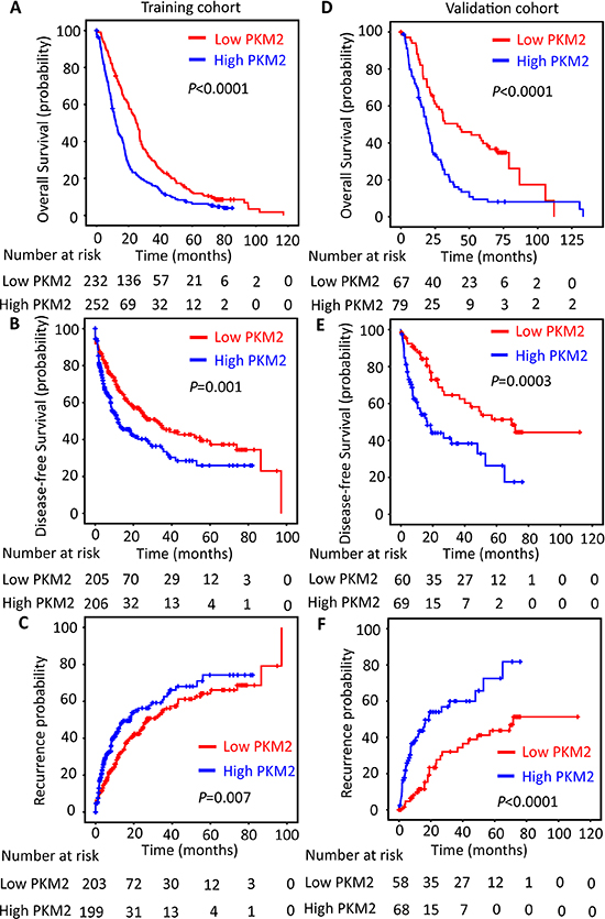 PKM2 expression is reversely correlated with outcomes of HCC patients.