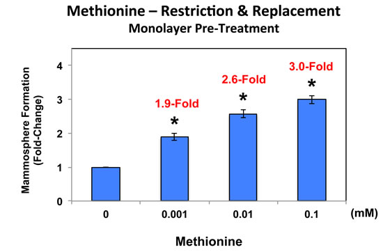 Pre-treatment of MCF7 cell monolayers with methionine restriction significantly reduces mammosphere formation.