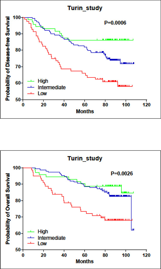 Associations of LINC00472 expression with patient survival in turin study.