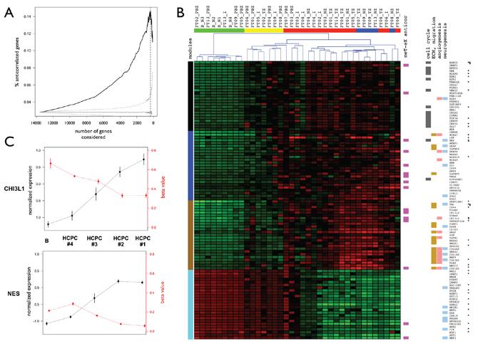 Anti-correlated genes and master genes signature.