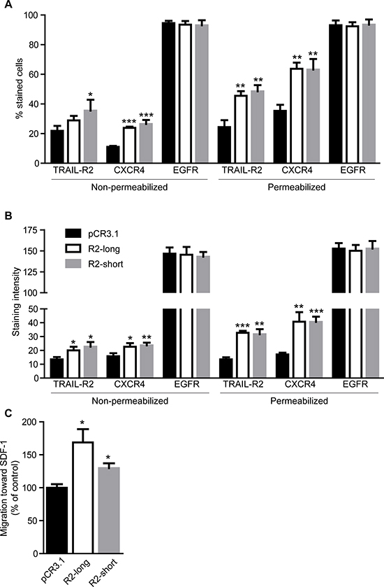 Overexpression of TRAIL-R2 in MDA-MB-231 cells upregulates the expression of CXCR4 and enhances migration towards SDF-1.
