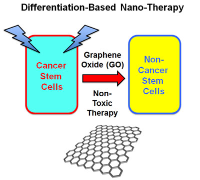 Graphene oxide (GO): Targeting cancer stem cells with differentiation-based nano-therapy.