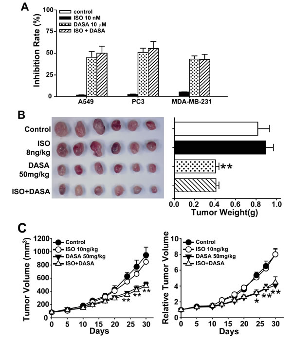Isoproterenol hydrochloride does not affect the anticancer activity of dasatinib.