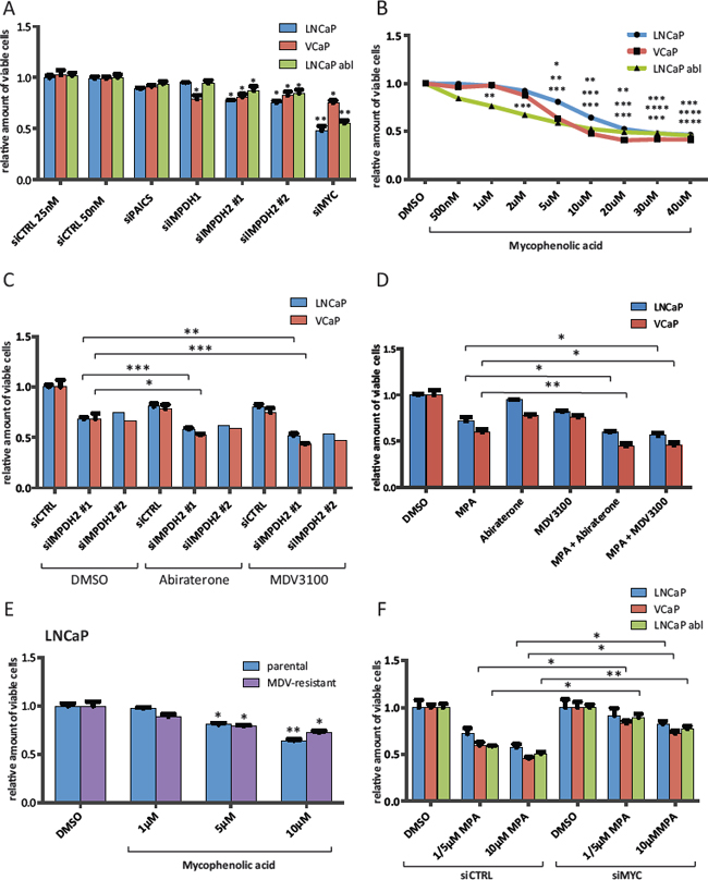Inhibition of IMPDH2 impairs the proliferation of prostate cancer cells and shows additive effects with established anti-androgens.