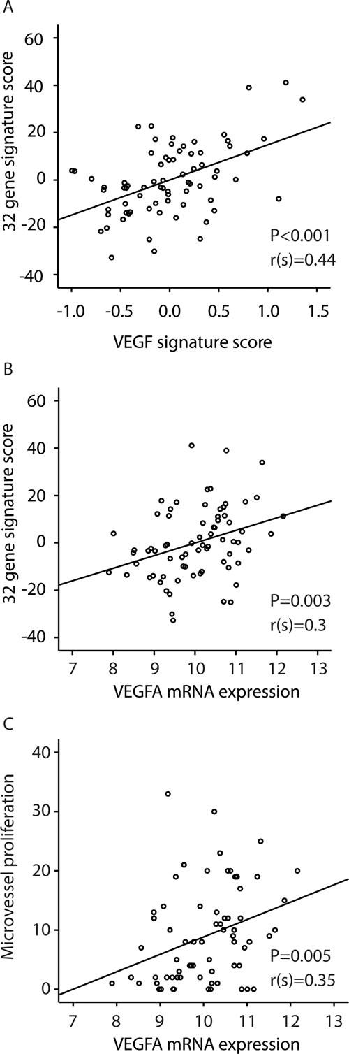 Correlations between: A: the 32-gene signature score and a VEGF-signature [25]; B: the 32-gene signature score and VEGF mRNA expression; C: Correlation between microvessel proliferation (MVP) and VEGF mRNA expression.