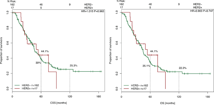Cancer-specific and overall survival survival after liver surgery in correlation with HER-2 expression.