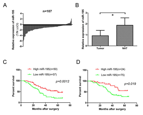 Expression level of miR-195 in 107 OS frozen samples and 99 osteosarcoma formalin- or paraformalin-fixed, paraffin-embedded (FFPE) tissues.