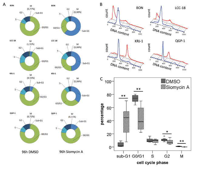 Cell cycle analysis of GEP-NEN cell lines treated with siomycin A .