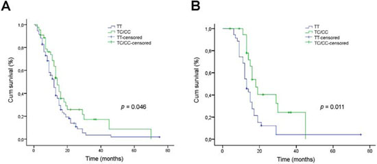 Relationship between the SEL1L SNP rs12435998 and survival in GBM patients.