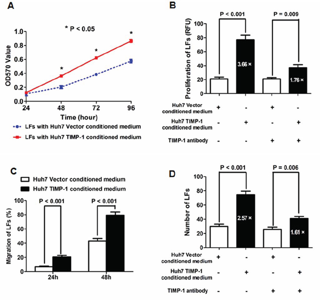 Conditioned medium from Huh7 TIMP-1 cells accelerated the cell viability, proliferation, migration and invasion of Huh7 cells.