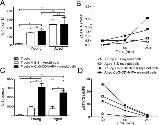 IL-4 and IL-6 in the extracellular medium of myeloid cells from CpG-ODN+IFA-treated mice.