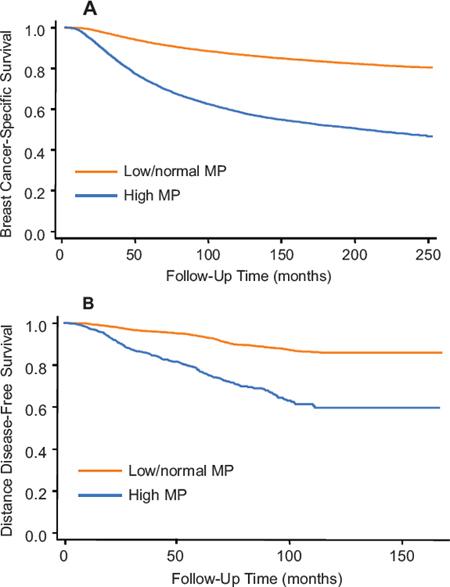Kaplan-Meier curves for the second cohort from SEER