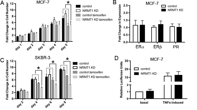 NRMT1 depletion also promotes sensitivity to tamoxifen that is independent of hormone receptor expression levels and NF-κB signaling.