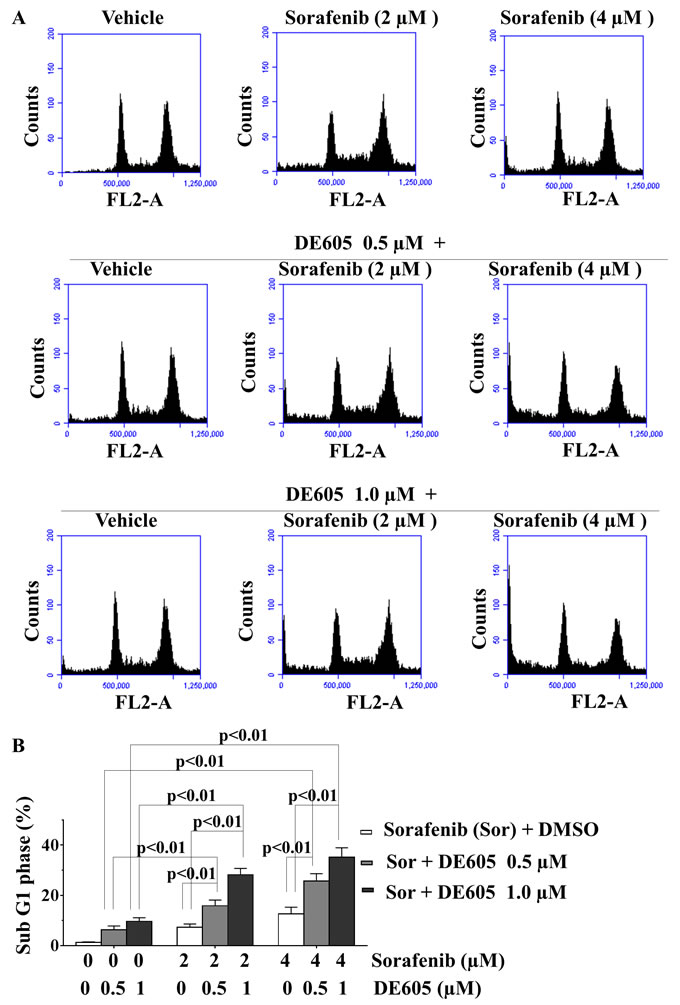Effects of sorafenib in combination with DE605 on cell-cycle progression in PLC/PRF/5 cells.