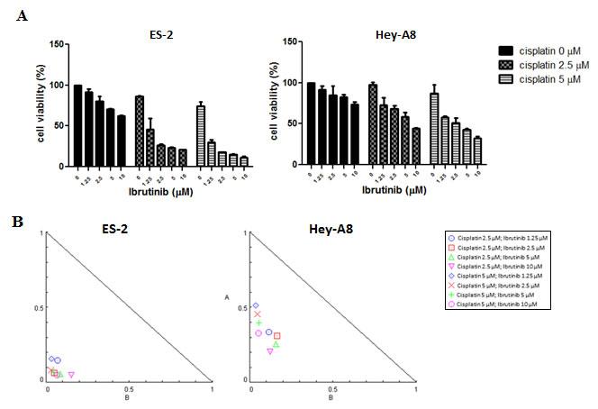 Btk inhibitor potentiates effects of cisplatin in eliminating ovarian cancer cells.