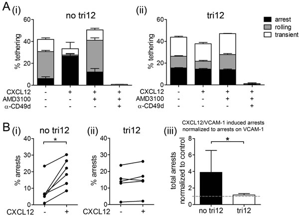 CXCL12 induces arrests of no tri12 but not of tri12 CLL cells on VCAM-1 under shear stress.