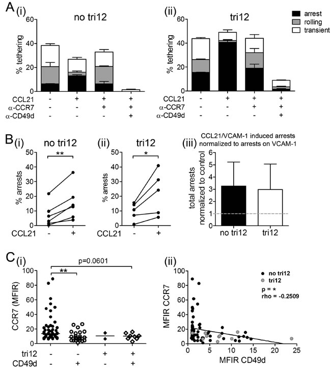CCL21 is capable to induce arrests of tri12 CLL cells on VCAM-1 under shear stress.