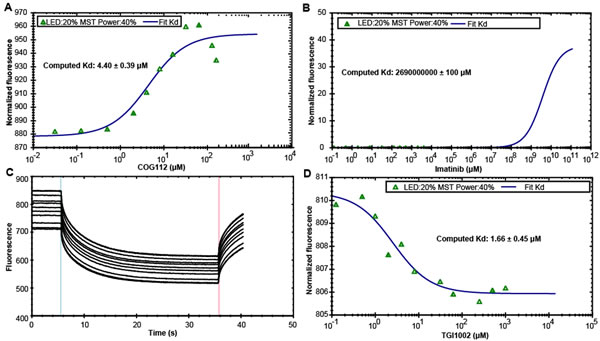 Specific binding of TGI1002 to recombinant human SET oncoprotein measured by MST.