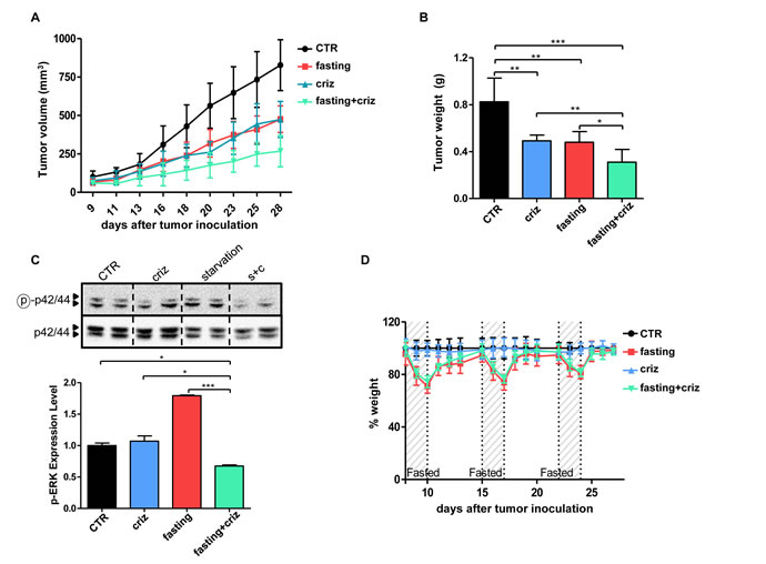 Fasting potentiates the anticancer activity of crizotinib