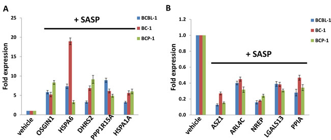 Validation of microarray results by qRT-PCR for selected candidate genes.