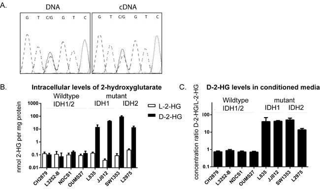 Comparison of the levels of D-2-HG and L-2-HG between