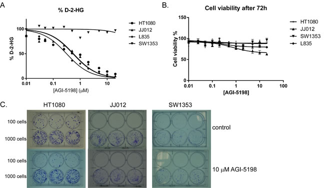 Inhibition of mutant IDH1 for 72 hours using AGI-5198 in chondrosarcoma cell lines.