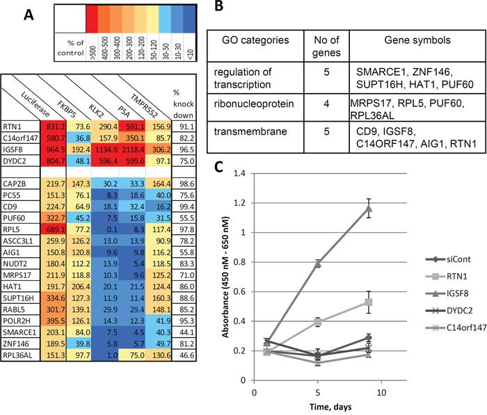 New regulators of androgen-responsive genes identified in the functional screening.
