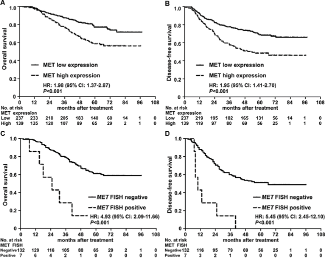 Kaplan-Meier overall survival and disease-free survival curves for patients with nasopharyngeal carcinoma stratified by MET protein expression and MET amplification status.