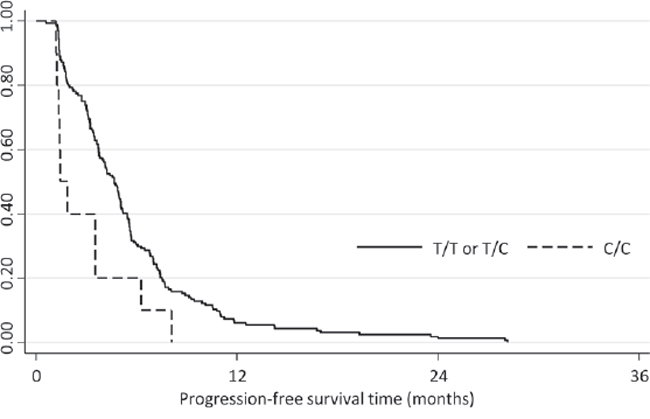 Kaplan-Meier plot depicting the progression-free survival of the validation cohort according to the SLC15A2 genotype.