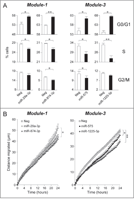 Over-expression of selected Module-1 and Module-3 miRs up-regulated by ATRA and/or Lapatinib: effects on SKBR3 cell-cycle and motility.
