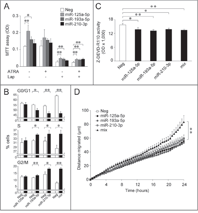 Over-expression of selected Module-2 miRs down-regulated by ATRA and/or Lapatinib: effects on SKBR3 growth, cell-cycle, apoptosis and motility.