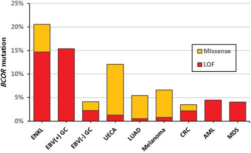 Mutation rates of BCOR according to tumor type.