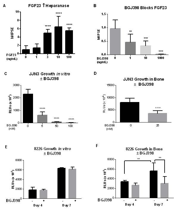 Pan-FGFR kinase inhibitor blocks responses to FGF23