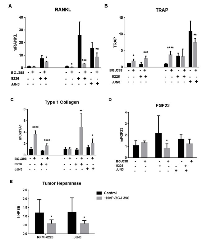 Effects of pan-FGFR kinase inhibitor on bone cell and MM responses in co-culture.