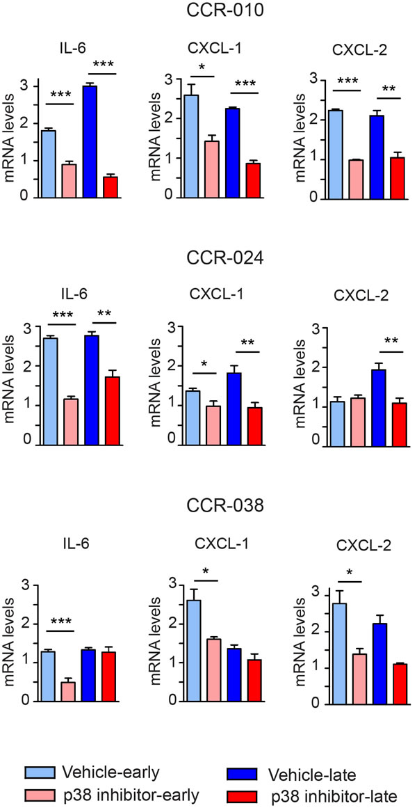 Effect of the p38 MAPK inhibitor in cytokine production by PDXs.