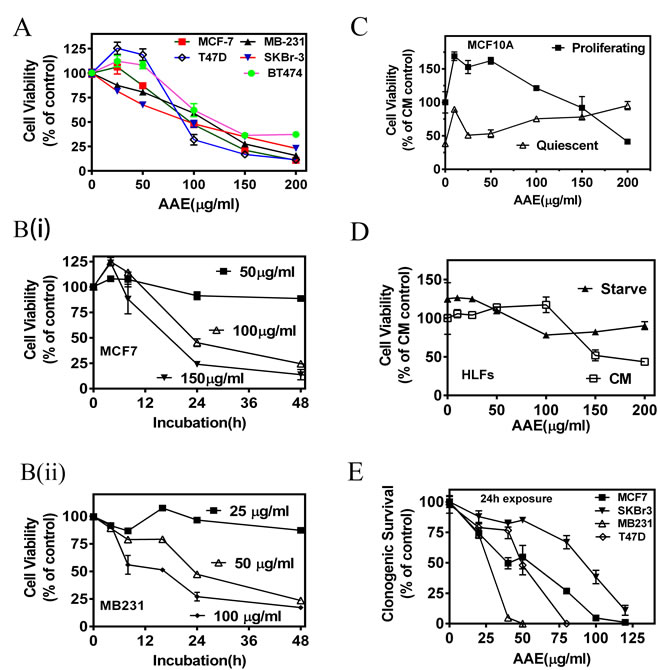 AAE inhibits BrCa cell viability and replication potential (colony-forming ability).