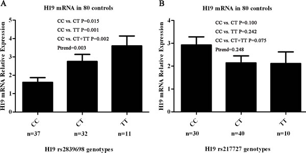 Correlation between rs2839698 and rs217727 genotypes and expression of H19 mRNA.