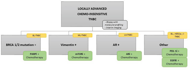 Flow chart of potent new TNBC clinical trial.