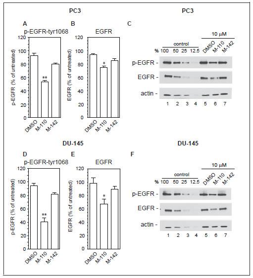 M-110 down regulates EGFRtyr1068 expression.
