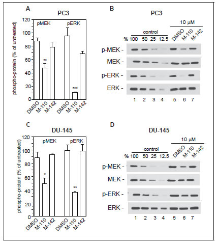 M-110 down regulates EGF induced p-MEK1/2 and p-ERK1/2.