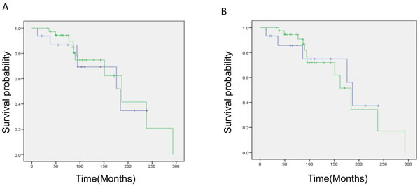 Kaplan–Meier survival analysis of oligodendroglial and astrocytic gliomas with total 1p19q loss.