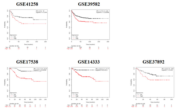 Kaplan-Meier survival plots derived by employing the signature of RALA responsive genes in five independent colon cancer datasets shows worse prognosis for those patients where a higher expression of RALA signature was observed.