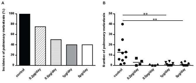 Treatment of mice with halofuginone inhibits lung metastases development.