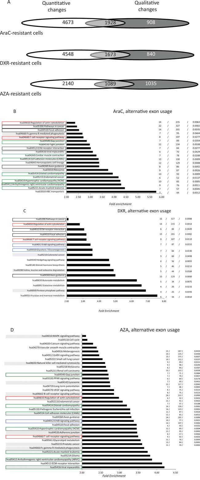 Distribution of alternative exon usages in AML cells that are resistant to anti-cancer drugs.