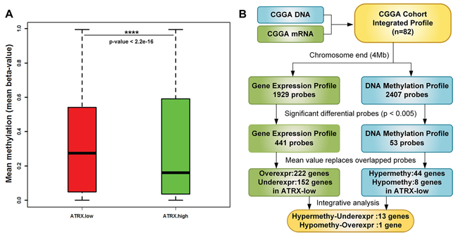 Strategy to identify significant genes of both DNA methylation and gene expression profiles.