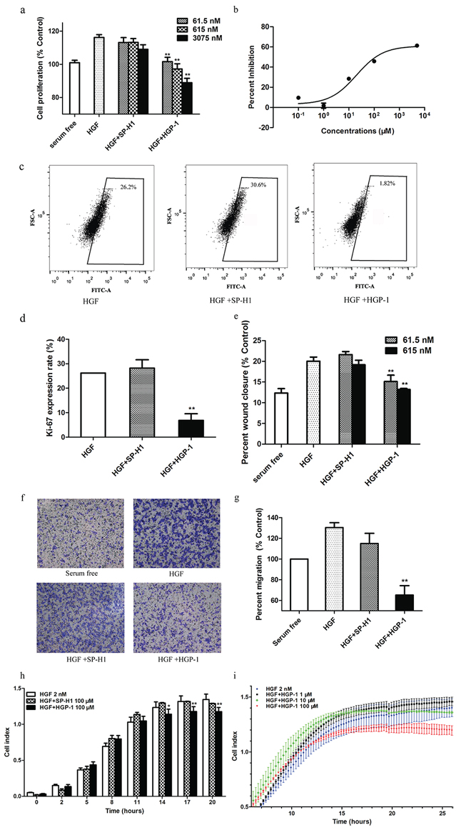 HGP-1 attenuated HGF-mediated cellular functions.